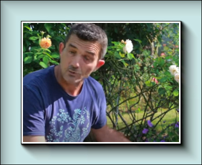 Youtube : VIVACES FACILES à TRES LONGUE FLORAISON : 5 plantes indispensables !